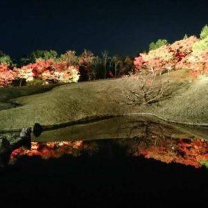 所長代理から毘沙門堂の写真を頂きました☺️ 見事な逆さ紅葉ですね👏✨