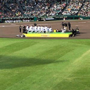 先日、阪神タイガースのファン感謝デーに行ってきました!年明けに重大な発表があります(・ω・)ノ