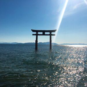 ❶白髭神社の鳥居✨ 鳥居を見に行く際は道路を渡る必要があるのでご注意を⚠️