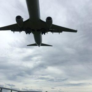 真下から飛行機も見る事ができていい休日でした✨